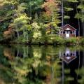 Landscape,New Hampshire
