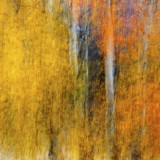 Nature's, art, eastern, idaho, camera, paint, limited, edition, gallery, prints