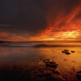 in, San Diego, tide, smell, of, dead, fish, and, eerie, dark reds, blanketed, sky,