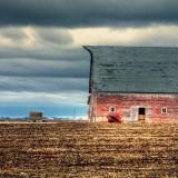 classic, Nebraska, barn, image, missing, shingles, barns