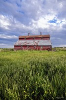Big, Red, Barn, spring, wahoo, nebraska, barn, barns