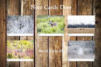 Deer Note Cards