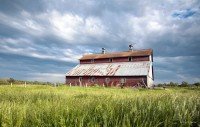 pictures, barns, story, contrast, sky, blues, grass, yellow, wildflowers, old, red, barn,