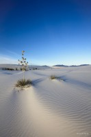 New Mexico, sand, white, sands, new mexico,