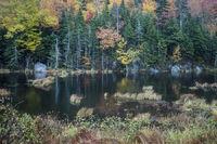 Lake in the White Mountains