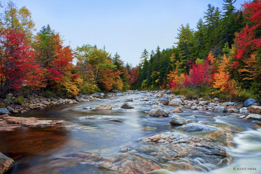 Kangamangus Stream Kangamangus New Hampshire Scott