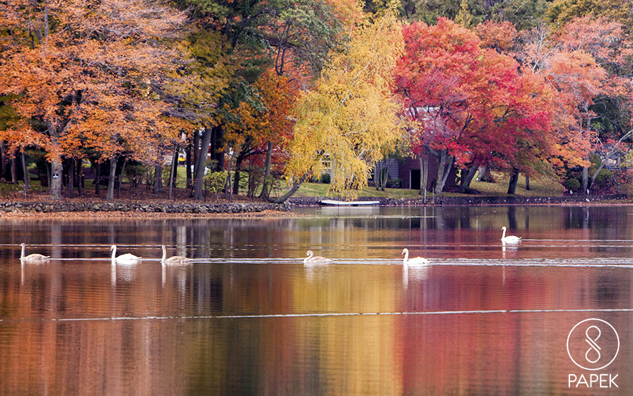 Fall, Massachusetts, lake, photo
