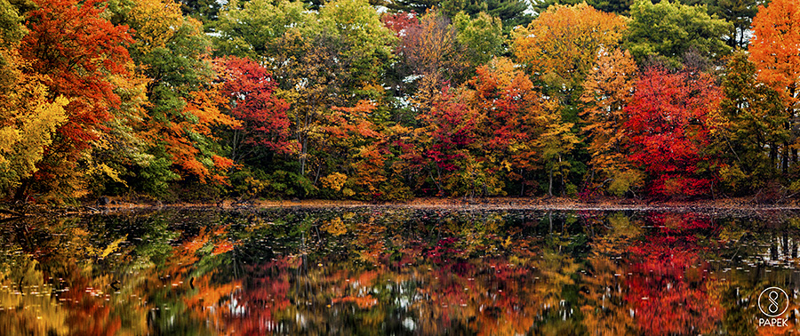 Massachusetts, fall, colors, lake , photo