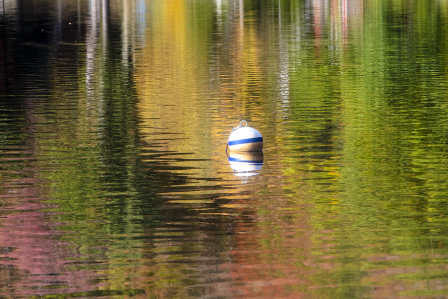 Water_reflections