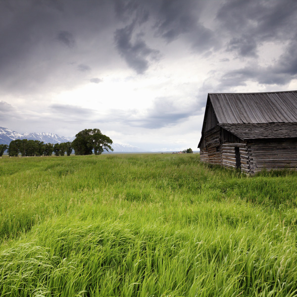 Barn Calendar, Nature, photography, prints