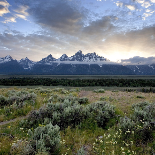 Colorado, Jackson Hole, Nature, Yellowstone, photography, prints, photo