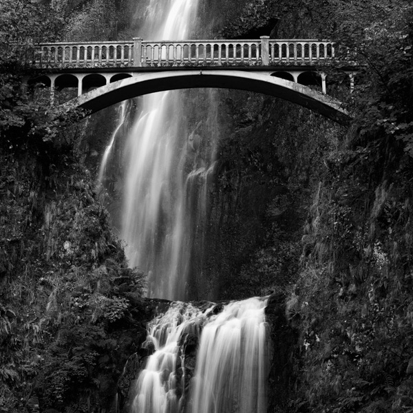 Nature, photography, prints