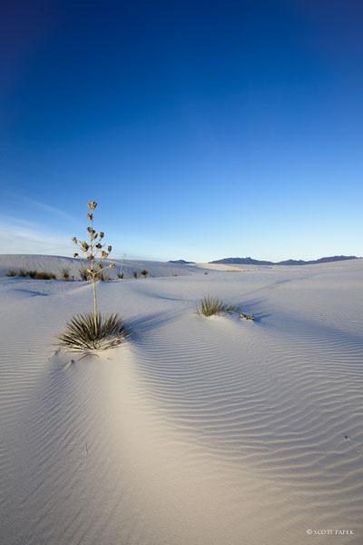 New Mexico, sand, white, sands, new mexico,, photo