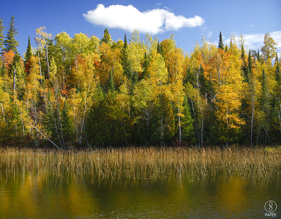 fall, Minnesota, Lake, photo